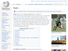 Rugby in Wikipedia