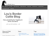 Blog eines Bordercollie