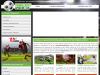 Kostenlose Fussballspiele und Sportwetten Anbieter