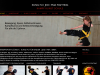 Kungfufighting.ch
