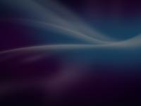 http://www.pmi-hamburg.de