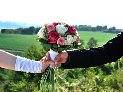 Im stationären blumen und zimmerpflanzen handel in deutschland